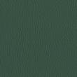 Rugoso Verde Militar