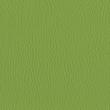 Rugoso Verde Pistacho