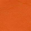 Scribe Naranja